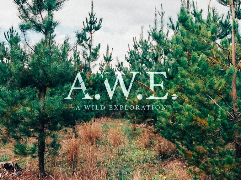 AWE_Banner