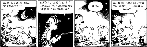 Calvin and Hobbes Campfire and Marshmallows